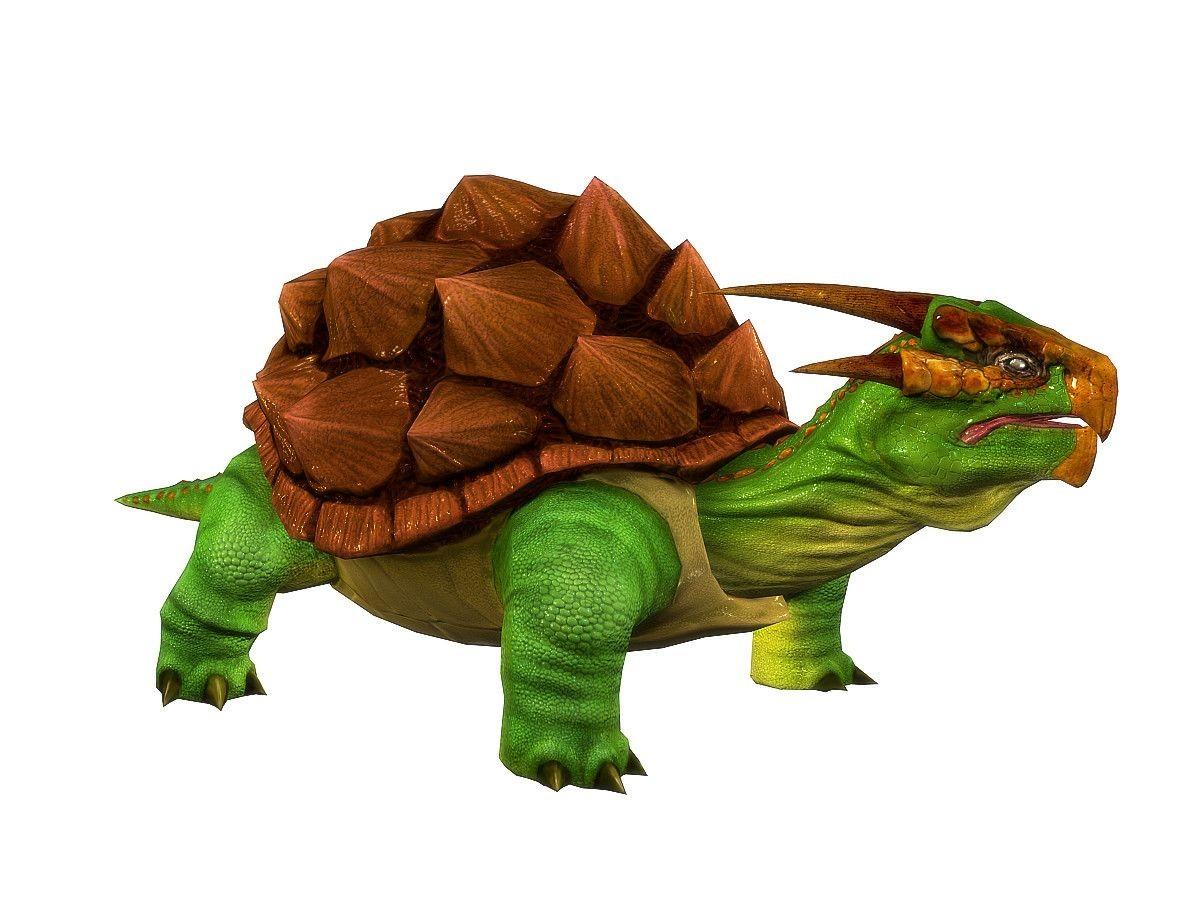 Papercraft Turtle Dragon Turtles 3d Model 3d Model 3d Modeling