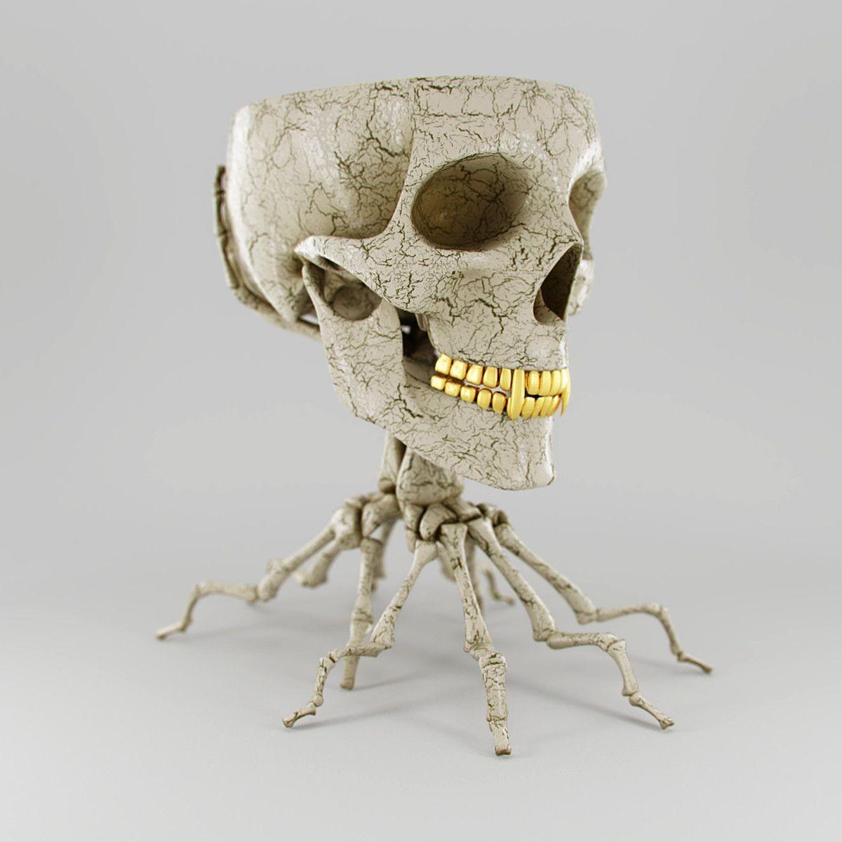 Skeleton Papercraft 3ds Cup Skull 3d Model 3d Modeling Pinterest