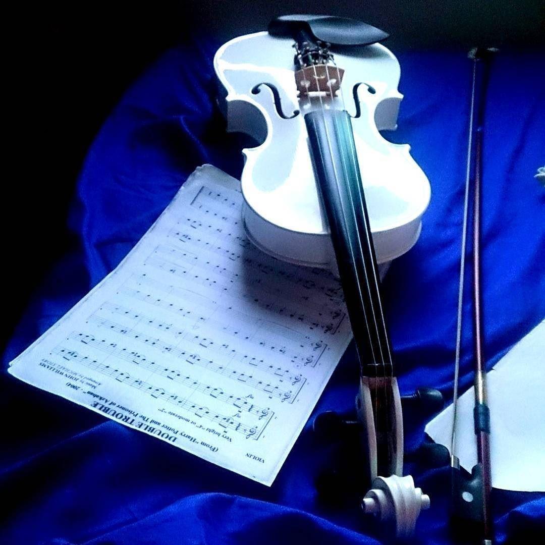 Violin Papercraft Months Ago Violin Violino Instrumental Music Harrypotter